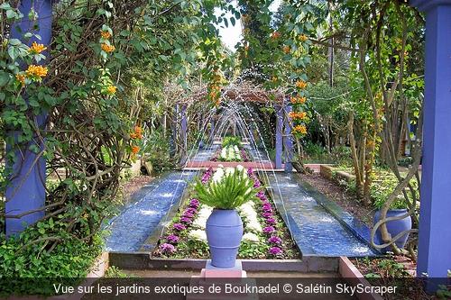 Escapade maroc le maroc de jardins en riads voyage for Jardin hispano mauresque