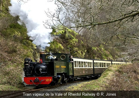 Train vapeur de la Vale of Rheidol Railway R. Jones