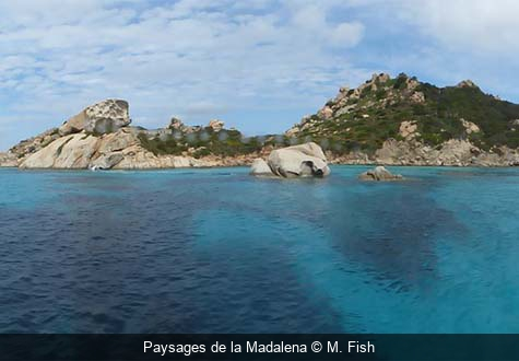 Paysages de la Madalena M. Fish