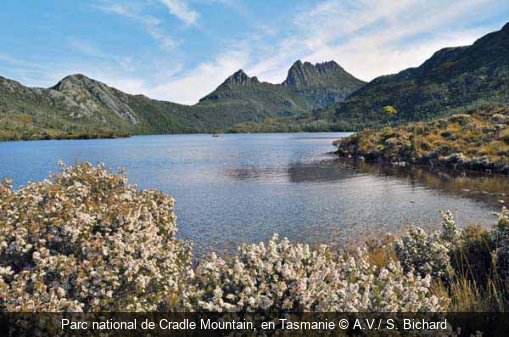 Parc national de Cradle Mountain, en Tasmanie A.V./ S. Bichard