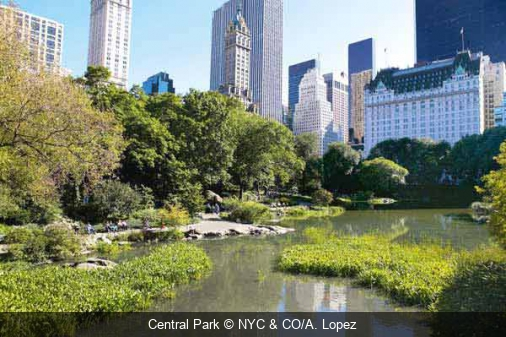 Central Park NYC & CO/A. Lopez