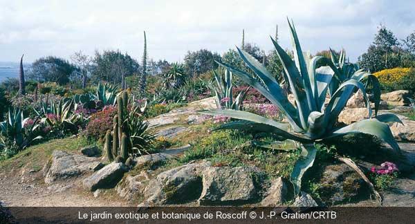 Semaine th matique france jardins de cornouaille voyage culturel avec arts et vie - Jardin botanique de cornouaille ...