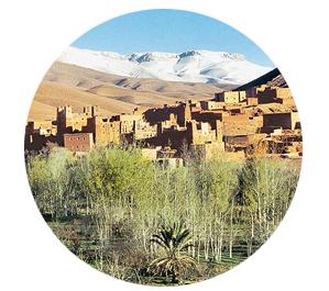 Voyage Maroc | Voyage culturel avec Arts et Vie